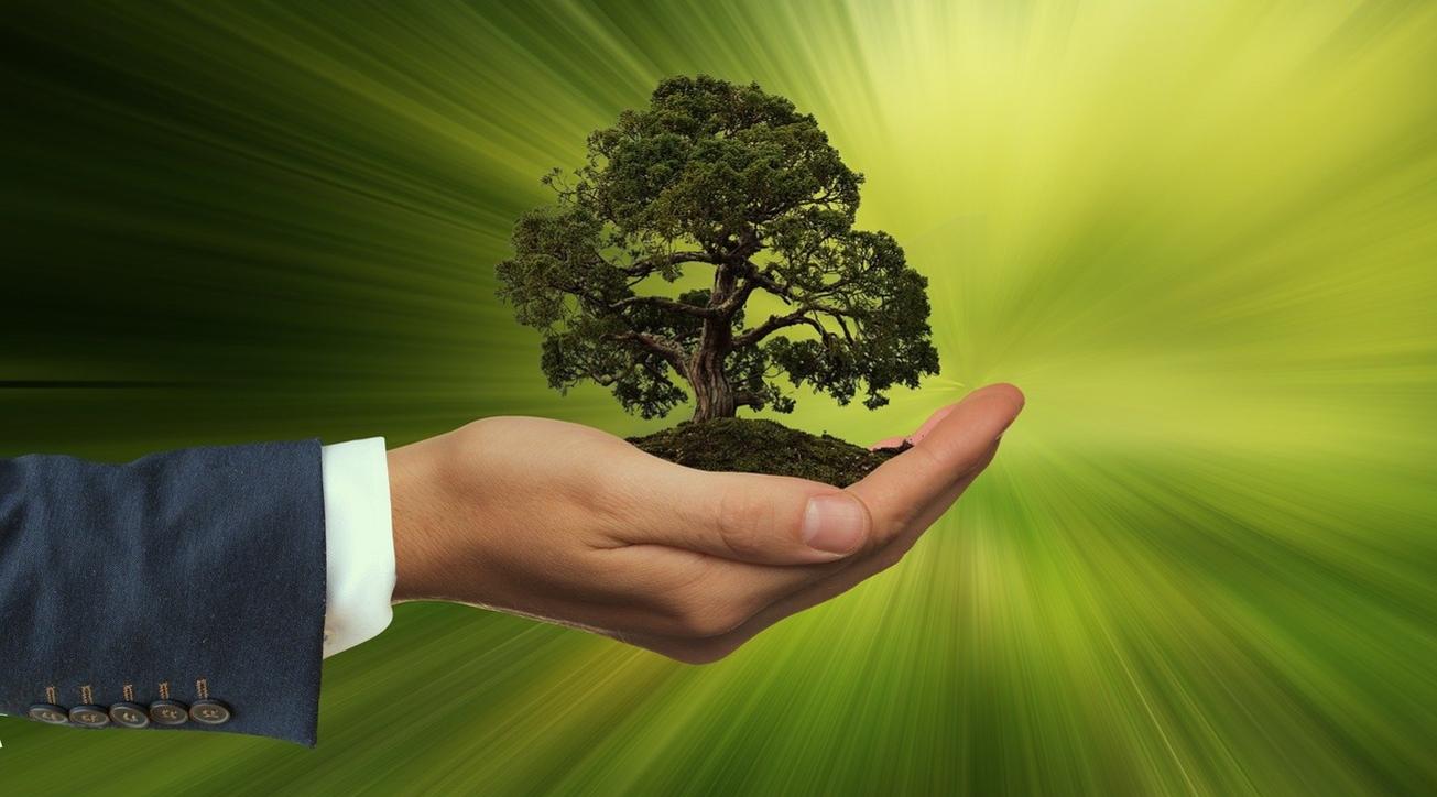 Corporate sustainability, Facility management